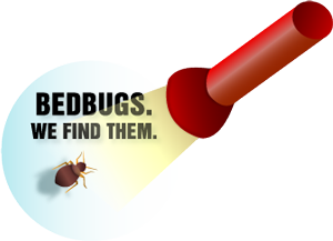 bed-bug-control-monmouth-county