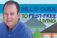Bill's Guide to Pest-Free Living in New Jersey