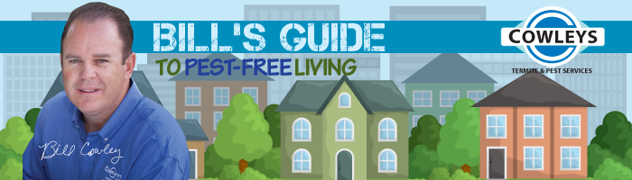 Bill's Guide to Pest-Free Living in New Jersey.