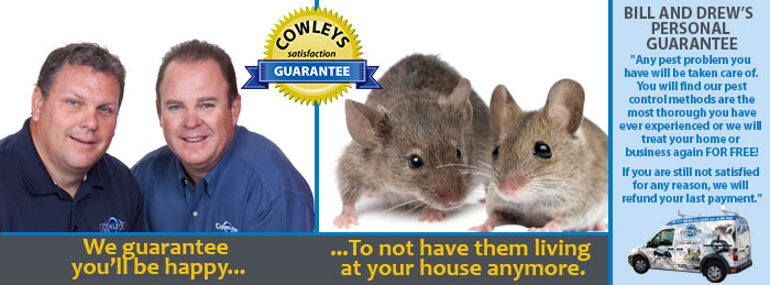 Cowley's Termite and Pest Control