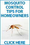 Mosquito Control Tips for Homeowners