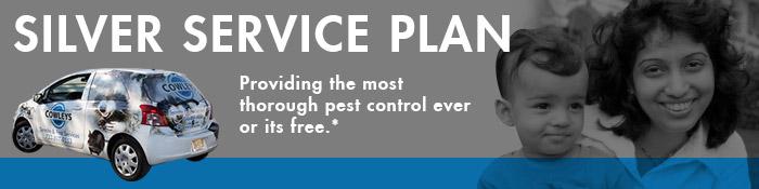 silver-service-plan-header2